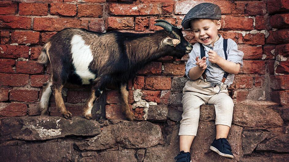 Kleiner, lachender Junge mit Ziege: Die Junge streckt ihren Kopf zu ihm. Das Kind ist chic angezogen.